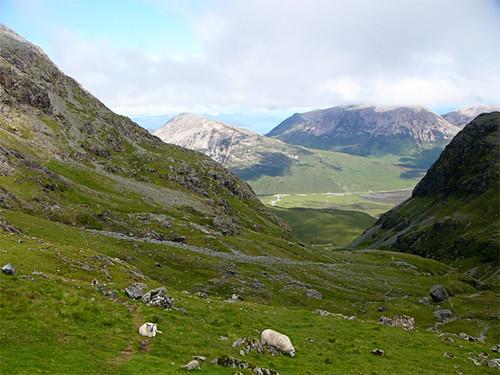Scotland-(5)