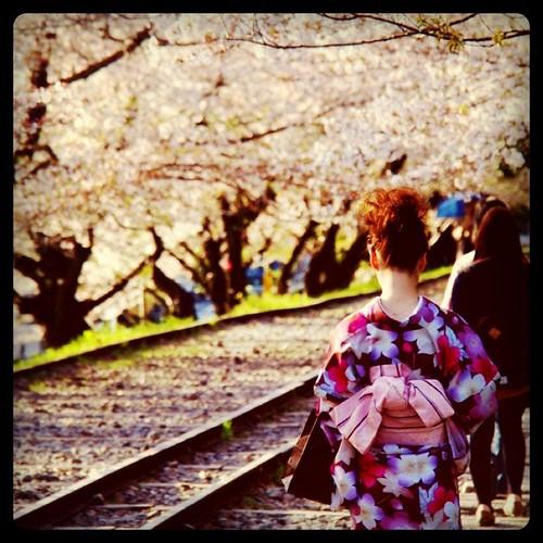 京都だねぇ。