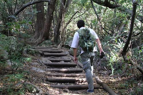 My tour guide in Kirstenbosch, Brett