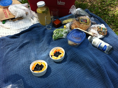 our picnic