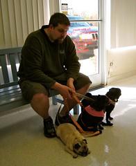 Annual Pug Vet Visit 2011