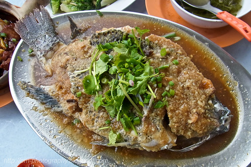 steamed tilapia with minced garlic RIMG0116 copy