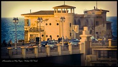 (Hebat El-Niel) Tags: photography nikon egypt photographers fujifilm