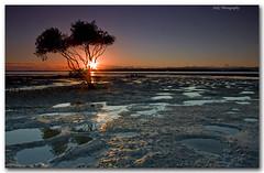 Sun Up (Adam Randell) Tags: longexposure canon dawn sand colours mud mangrove flare lowtide sunstar noclouds gympie 50d tincanbay singhray adamrandell