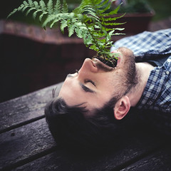Long my imprisoned spirit lay (STCM) Tags: plant man flower fern leaves mouth mouse death long shoot spirit birth stephen tc morris sprout grown lay imprisoned stcm