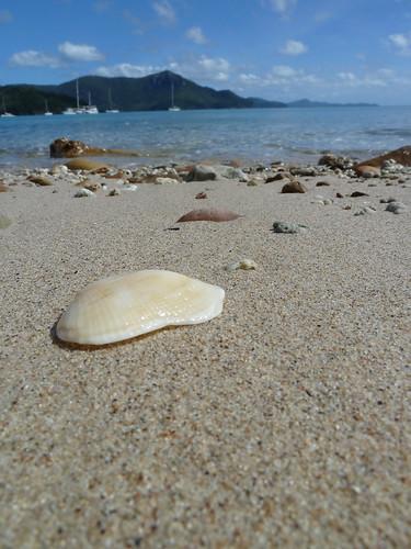 2011P1010060Australia, Hamilton Island, Whitehaven Beach.jpg