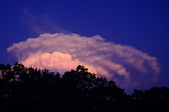 Cloud 4 (Hayden Yates) Tags: sunset weather spectacular austintexas stormcloud mushroomcloud raresight cumulonimbuscloud springcloud