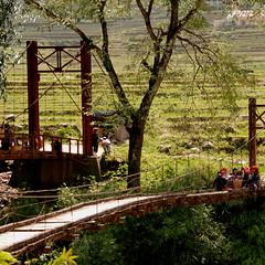 sapa (eliesporta) Tags: bridge light field landscape puente asia rice indigo paisaje tribal vietnam campo sapa hmong arroz tribu puentecolgante colgante poblado