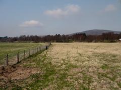 GH-2011-04-1020546 (geoffhuggins) Tags: family scotland places glenesk fraserhuggins