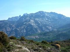 Début des crêtes de Marignana : vers Culetta a e Conche, vue vers Evisa, la rive Nord de la Spelunca et Tafonatu/Paglia Orba