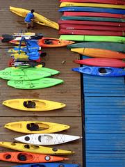 Colorful Kayaks (Warriorwriter) Tags: water colors delete10 river delete9 boats delete5 delete2 pier washingtondc dock kayak delete6 delete7 vibrant save3 delete8 delete3 delete delete4 save save2 georgetown save4 potomac save5 deletedbydeletemeuncensored