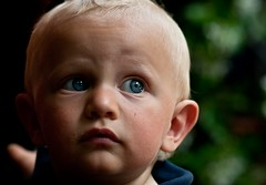 PIETRO (Lace1952) Tags: kid occhi sguardo azzurro pietro capelli bambino biondo nikkor18200vr nikond300