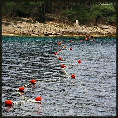 The red buoys - Reposted (Poljeianin ~ Dissapointed!) Tags: yearend croatia hrvatska dalmatia dalmacija bra wow1 postira buoyant flickrdiamond platinumheartaward islandofbrac 100commentgroup poljeianin prvjabay mygearandme mygearandmepremium mygearandmebronze mygearandmesilver mygearandmegold mygearandmeplatinum mygearandmediamond ringexcellence uvalaprvja aboveandbeyondlevel4 aboveandbeyondlevel1 aboveandbeyondlevel2 aboveandbeyondlevel3 rememberthatmomentlevel4 rememberthatmomentlevel1 rememberthatmomentlevel2 rememberthatmomentlevel3 vigilantphotographersunite vpu2 vpu3