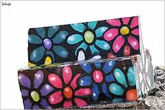 DSC_0041 (LAGRAJA) Tags: banco flores flowers arte art streetart bench