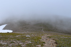 What the Wind Blew In (Sotosoroto) Tags: dayhike hiking mtrainier burroughsmountain cascades washington mountains cloud