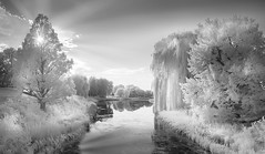 AT THE GATE (Nenad Spasojevic) Tags: white sky monochrome trees chi 2016 clouds nenadspasojevic atthegates fun infrared ir nature shadows naturallight lake sun exploration sunset black gray chicago sunrays water canal pano chicagobotanicgarden illinois il usa
