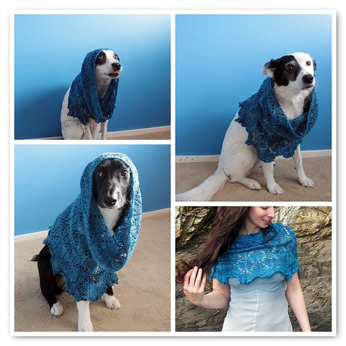 Tidewater Cowl modeled by all of us