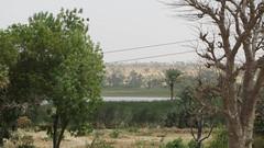 West Africa-2511
