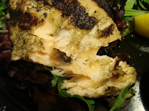 Tri Tip Salmon Closeup
