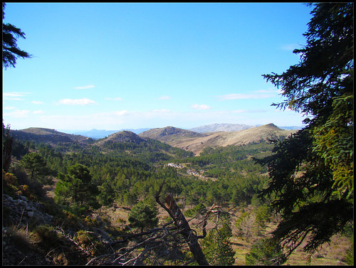 Ruta Torrecilla (4)