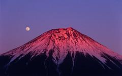 [フリー画像] 自然・風景, 山, 月, 富士山, 日本, 201104071900