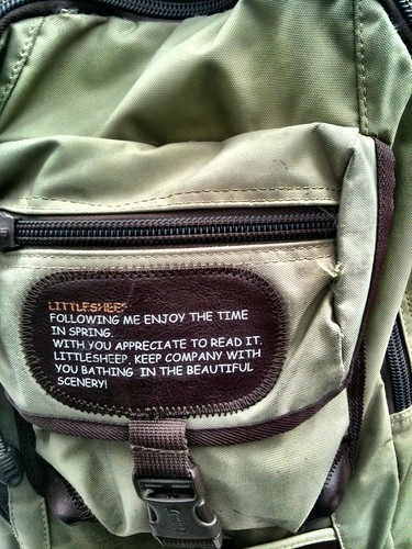 充实 Bookbag (closeup)