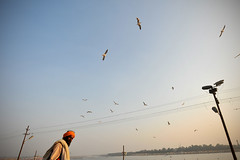 Sadhu (Leonid Plotkin) Tags: india festival asia traditional religion ritual tradition hindu hinduism mystic sadhu ascetic holyman mela sangam allahabad pryag maghmela