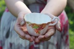 tea time (elizabethwilder) Tags: party summer girl spring warm child dress time tea teacup