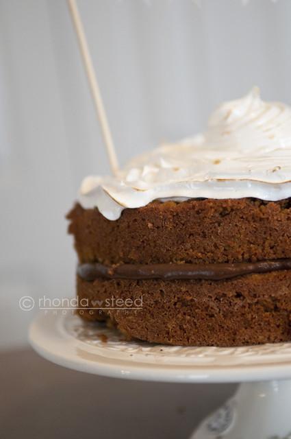 Smore's Cake Close up