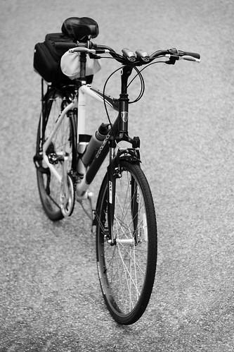 What is the model of your trek? | Trek Bikes | Flickr