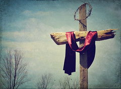Lead Me to the Cross (Tina M89) Tags: bluesky goodfriday crownofthorns barrentrees woodencross jesuscrucified ruggedcross diedforme lovedme leadmetothecross annagayactions scarletcloth paidmyransom diedforsinners hewhowassinless