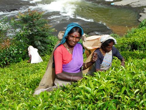 Mujeres tamiles