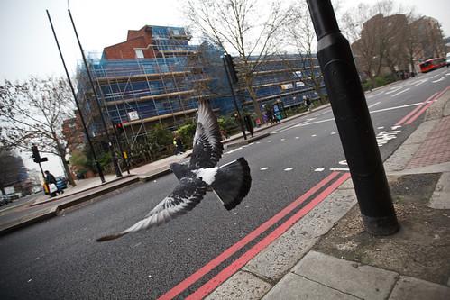London2011_0021