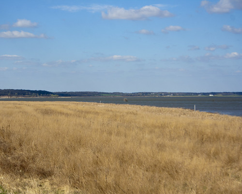 04112011JGW-EmiquonWetlandAccess_MG_5464