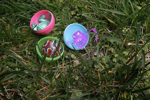 inside the eggs