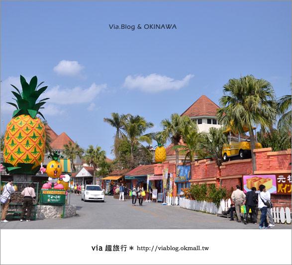 【via的沖繩旅誌】名護鳳梨公園~可愛又香甜的鳳梨樂園!2