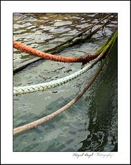 Amarrado al mar. | Explore May 1, 2011 #268 (mireba72) Tags: color textura mar agua mediterraneo tension marino seguridad reflejos cabos soga palams trenza firme cuerdas amarre motivos lazos atraque jarcia mireba