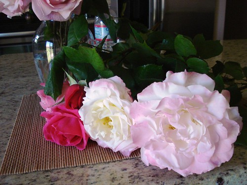 harvested garden oraganic roses