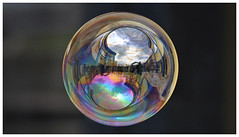 Un mondo in una bolla (edivad82) Tags: soap bubble soapbubble bolle bolladisapone