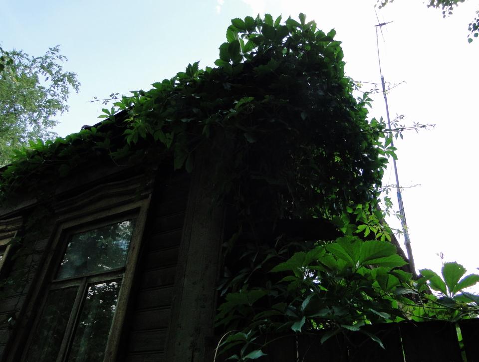 36-15june2011_3742_Noginsk