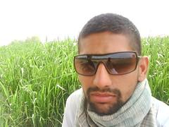 DSC00213 (Surinder Godara) Tags: surinder godara
