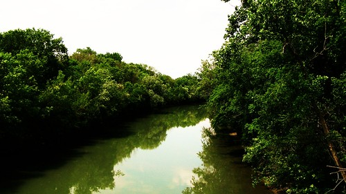 The north branch of the Chicago River,  Evanston Illinois USA. June 2011. by Eddie from Chicago