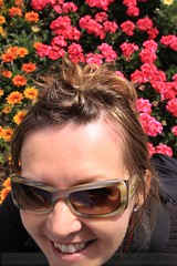 A Rose In Front Of Annuals (WeGoTwo) Tags: travel flowers roses mountains birds austria europe princess churches cathedrals bregenz swans waterfalls innsbruck lienz igls bregenzerwald mutters natters grosslockner fiestspiele bodenseeaustriaeuropeflowersinnsbruckprincess