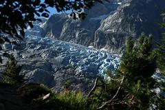 glacier du Trient (bulbocode909) Tags: valais suisse trient glacierdutrient glaciers montagnes nature arbres sentiers vert bleu paysages