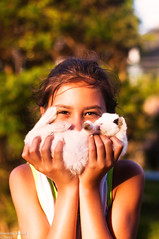 (danielle kiemel) Tags: light sunset summer portrait pets white cute bunny love girl childhood animals children child small joy young adorable happiness australia dwarfrabbit tiny nsw bond rabbits centralcoast squish goldenhour blackspots wamberal tinyrabbit babyrabbits minirabbit scuttles daniellekiemel rabbitstories handraisedbabyrabbits helpmeimbeingsquished