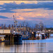 Steveston's Fleet by Clayton Perry Photoworks