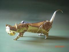 El gato de Joisel; Joisel's cat; le chat de Joisel (mrmicawer) Tags: cat origami gato papiroflexia