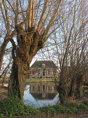 Boerderij - Farm (naturum) Tags: reflection netherlands river geotagged march spring farm nederland frame lente gein maart boerderij weerspiegeling rivier abcoude 2011 knotwilg gamewinner pollardwillow thechallengefactory geo:lat=5227884503 geo:lon=498676300