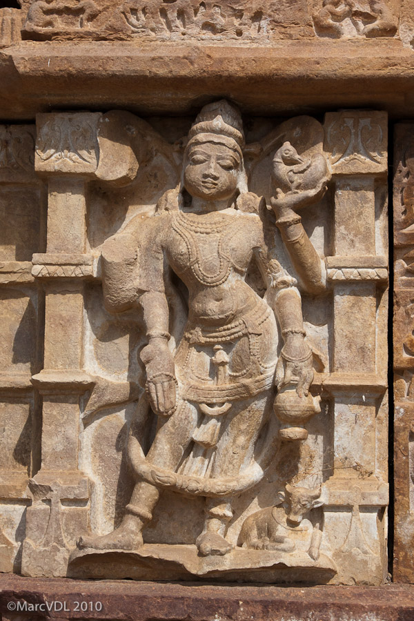 Rajasthan 2010 - Voyage au pays des Maharadjas - 2ème Partie 5598994536_042bb8179b_o