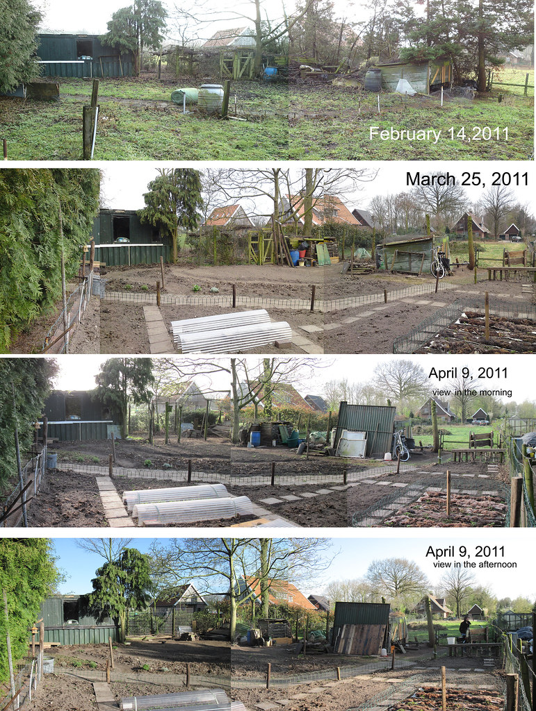 Hen house renovation ?? ...no, it will be a renewel !!